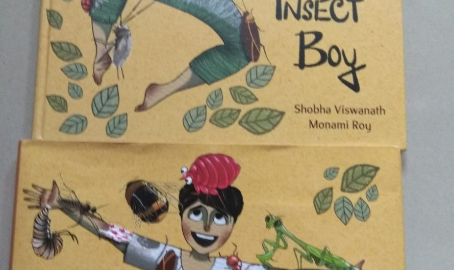 The Insect Boy Book review on Mums and stories