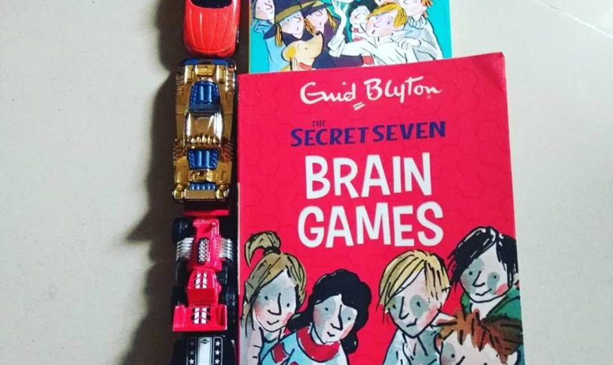 Secret Seven Mystery of the Skull and Brain Games Review