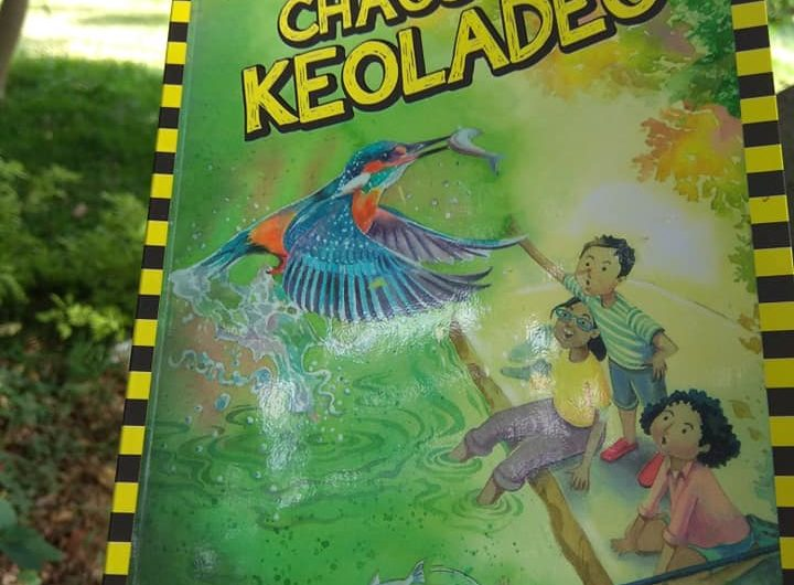 Chaos at Keoladeo review on Mums and Stories