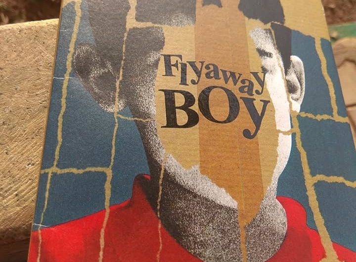 Book review of Flyaway Boy by Jane De Suza