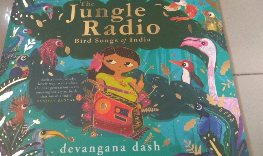 Jungle Radio The Bird Songs of India Review